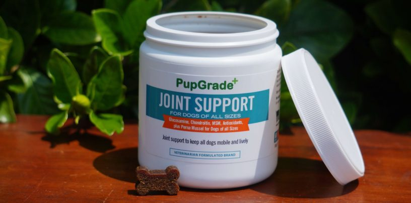 pupgrade joint support supplement for dogs